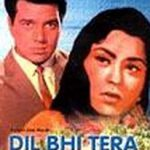 Old Hindi Movies 1960 - Dil Bhi Tera Hum Bhi Tere