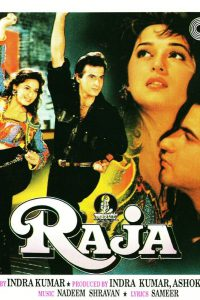 List Of 1995 Hindi Films- Raja