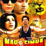 List Of Hindi Movies 1991 - Narsimha