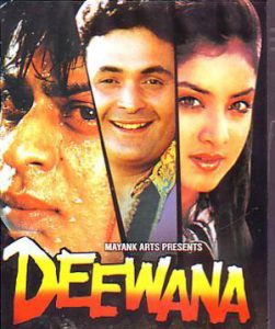 List Of Super Hit Hindi Movies 1992 - Deewana