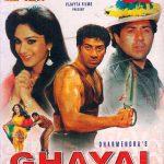 Superhit Hindi Movies List 1990 - Ghayal
