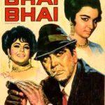 Bhai Bhai Top 1970 Hindi Movies