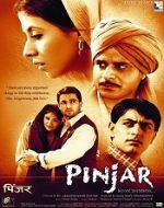 2003 Hindi Movies List - Pinjar