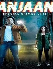 Best_51_Netflix_Web_Series-Anjaan